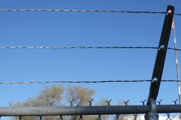 pet-central-boarding-security-fencing