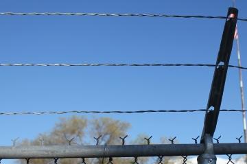 pet-central-boarding-security-fencing