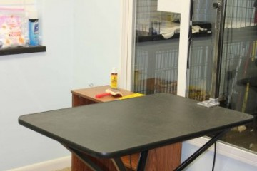 pet-central-grooming-station-c