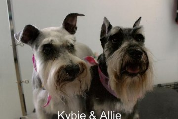 Kybie & Allie Pets of the Month August 2013